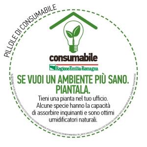 ConsumAbili (21)