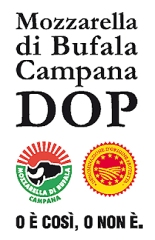 MozzarellaBufalaCampana-1