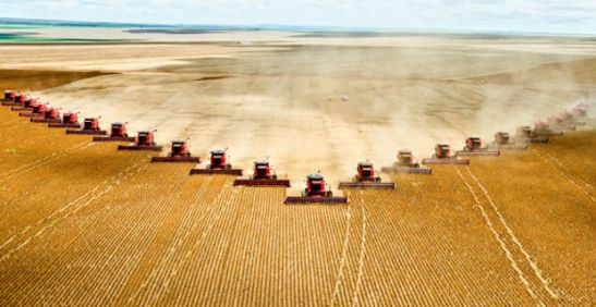 Emissioni-l'agricoltura-supera-la-deforestazione