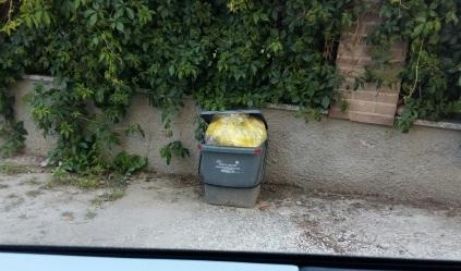 rifiuti (2)