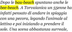 bau-beach-bee-beach