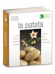 volume-la-patata